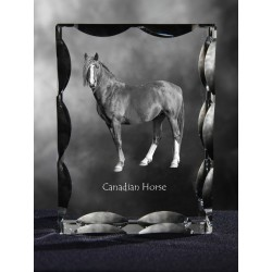 Canadian horse, Cubic crystal with horse, souvenir, decoration, limited edition, Collection
