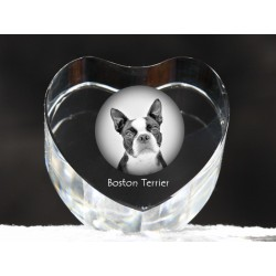 Boston Terrier, crystal heart with dog, souvenir, decoration, limited edition, Collection