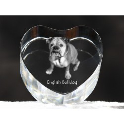 Bulldog, English Bulldog, crystal heart with dog, souvenir, decoration, limited edition, Collection