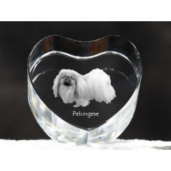 Pekingese, crystal heart with dog, souvenir, decoration, limited edition, Collection