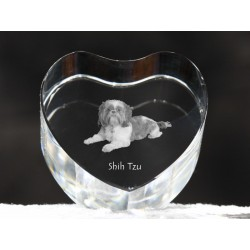 Shih Tzu, crystal heart with dog, souvenir, decoration, limited edition, Collection