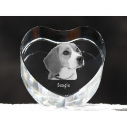 Beagle, crystal heart with dog, souvenir, decoration, limited edition, Collection