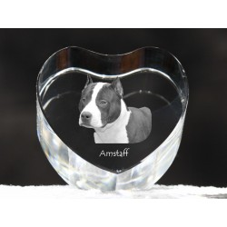 American Staffordshire Terrier, crystal heart with dog, souvenir, decoration, limited edition, Collection