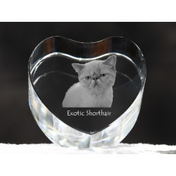 Exotic Shorthair, crystal heart with cat, souvenir, decoration, limited edition, Collection