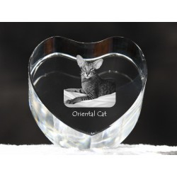 Oriental cat, crystal heart with cat, souvenir, decoration, limited edition, Collection