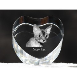 Devon rex, crystal heart with cat, souvenir, decoration, limited edition, Collection