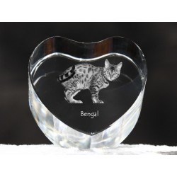 Bengal, crystal heart with cat, souvenir, decoration, limited edition, Collection