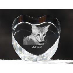 Savannah cat, crystal heart with cat, souvenir, decoration, limited edition, Collection