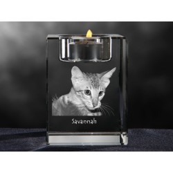 crystal candlestick with cat, souvenir, decoration, limited edition, Collection