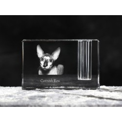 Cornish Rex, crystal pen holder with cat, souvenir, decoration, limited edition, Collection
