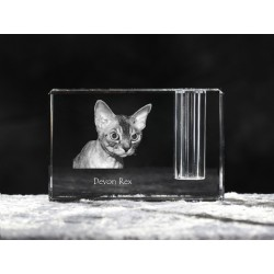 Devon rex, crystal pen holder with cat, souvenir, decoration, limited edition, Collection